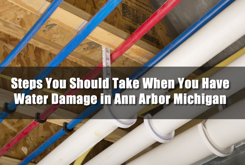 Steps You Should Take When You Have Water Damage in Ann Arbor Michigan