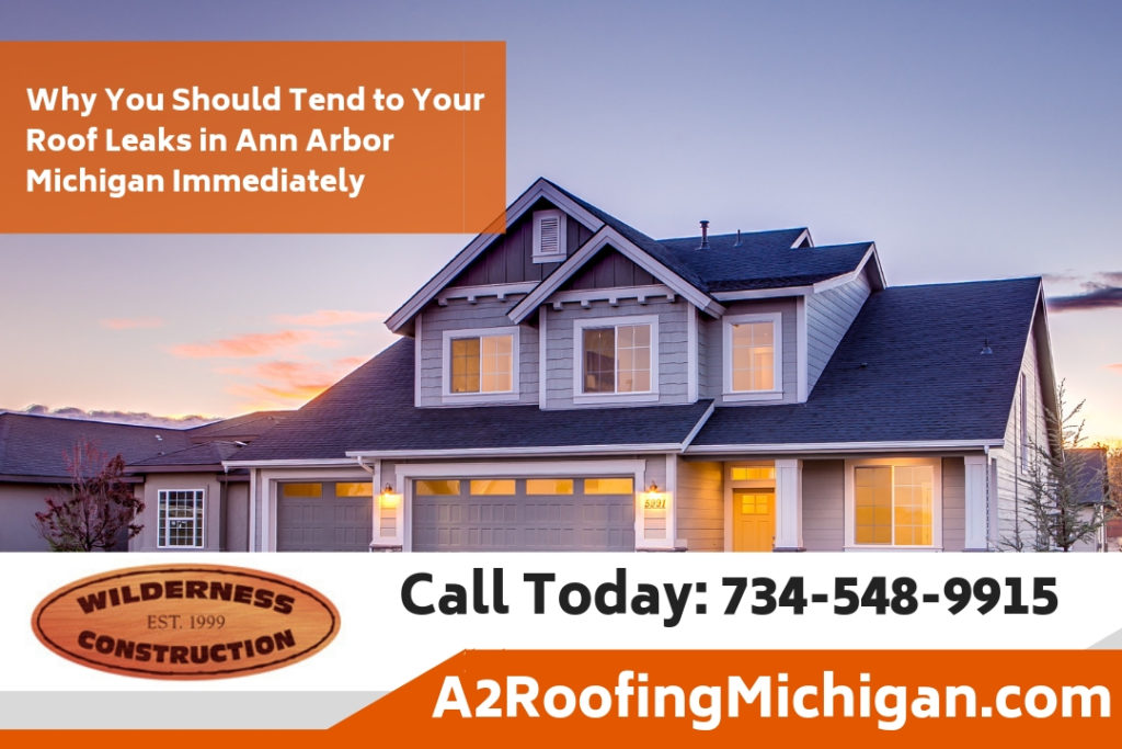 Why You Should Tend to Your Roof Leaks in Ann Arbor Michigan Immediately